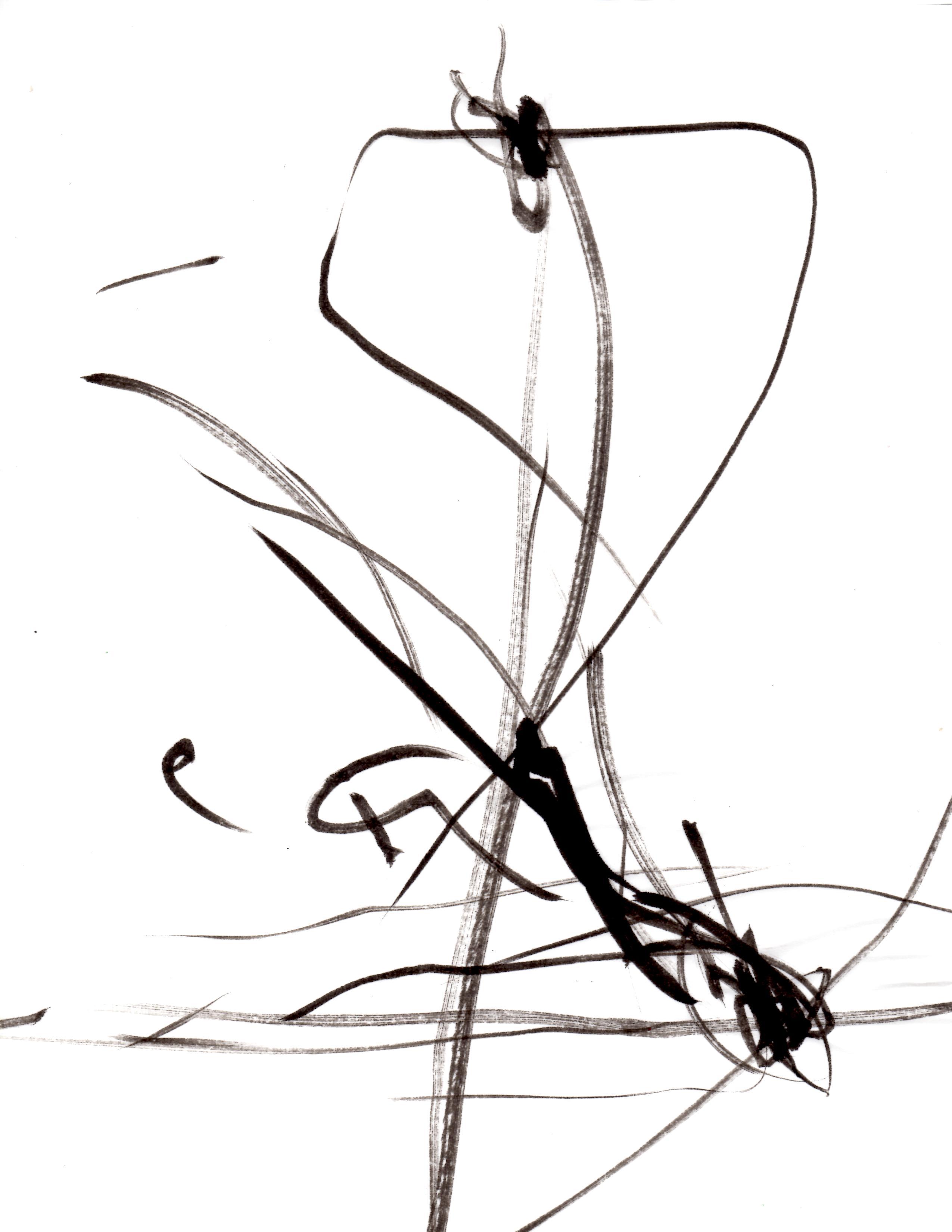 magnetic pendulum calligraphy  v1   u2013 ferzkopp net